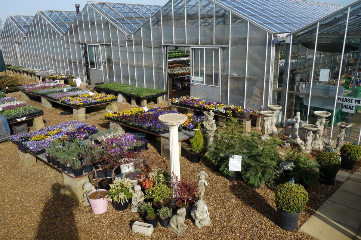 We are now open for summer bedding. Mon - Sat 9am - 5pm. Sun 10am - 4pm